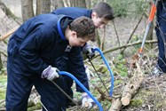 Helping to clear the felled trees to build a fence from the branches