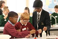 Bolton School Science Festival 2013