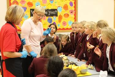 Mrs Riley showed the girls many different fruits and vegetables