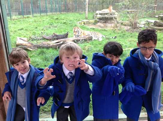 The boys do their best tiger impressions next to the enclosure!