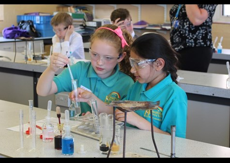Two pupils testing a solution made from jelly babies