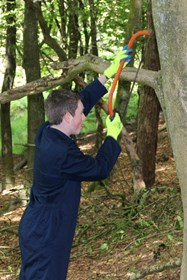 Cutting back overgrown and overhanging vegetation