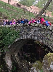 A group of Year 6 pupils looking down at Aira Force
