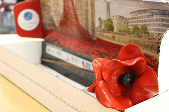 One of the Tower of London Poppies displayed at Tea at the Riley
