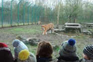 The children learned about a variety of animals at the zoo