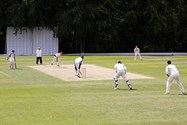 Banners can also be placed around the edge of the 1st XI cricket pitch