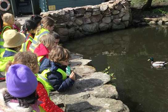 The children saw lots of different birds at Martin Mere