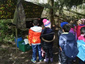 Learning about woodland shelters and bushcraft