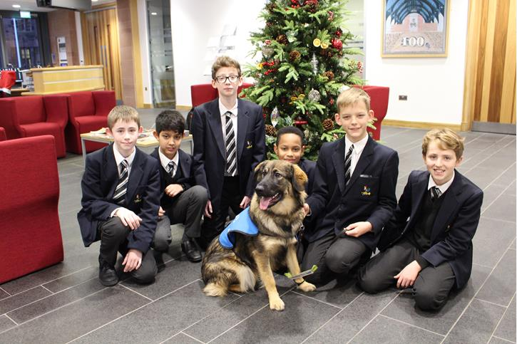 Tilly the Guide Dog and Y8 Boys