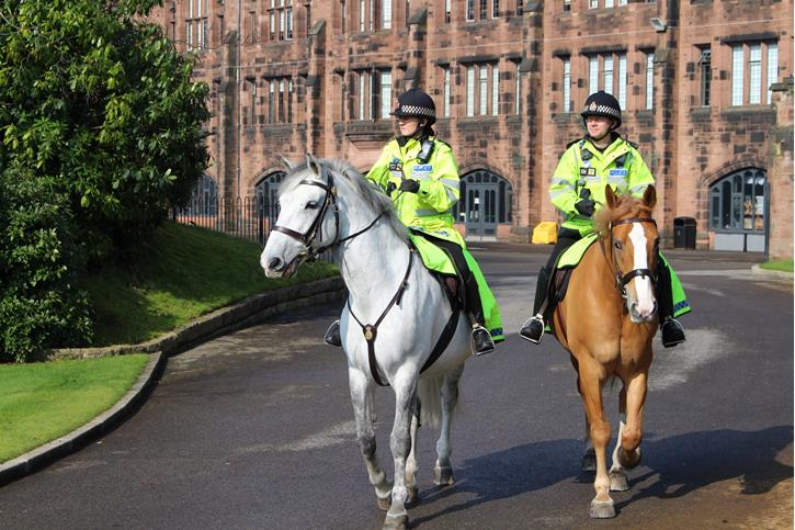 Police Horses Maxwell and Bumble