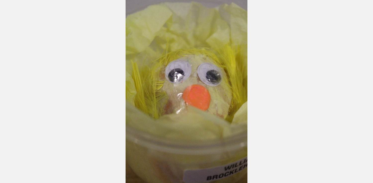 Easter Egg Decorating Googly Eyes Chick