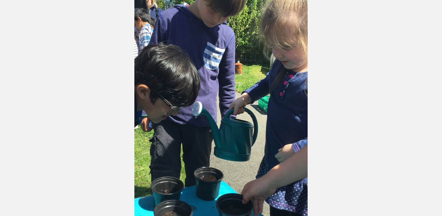 HIVE Visit - planting seeds