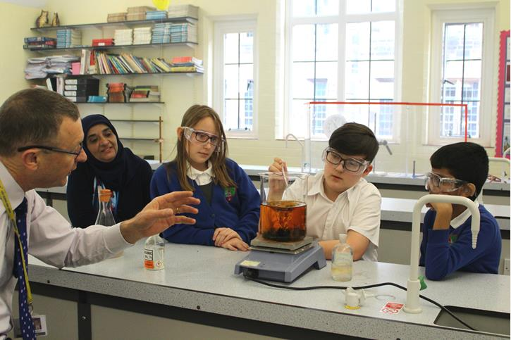 Thomasson Memorial Science Lessons - chemical reaction
