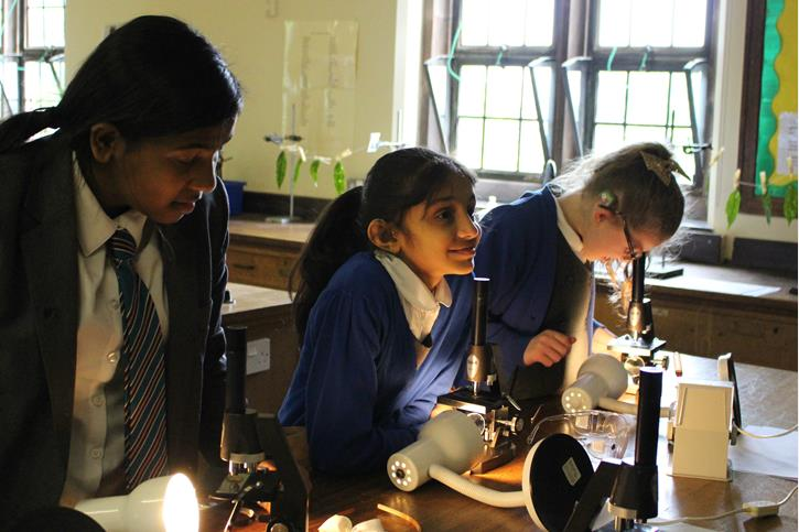 Thomasson Memorial Science Lessons - using microscopes