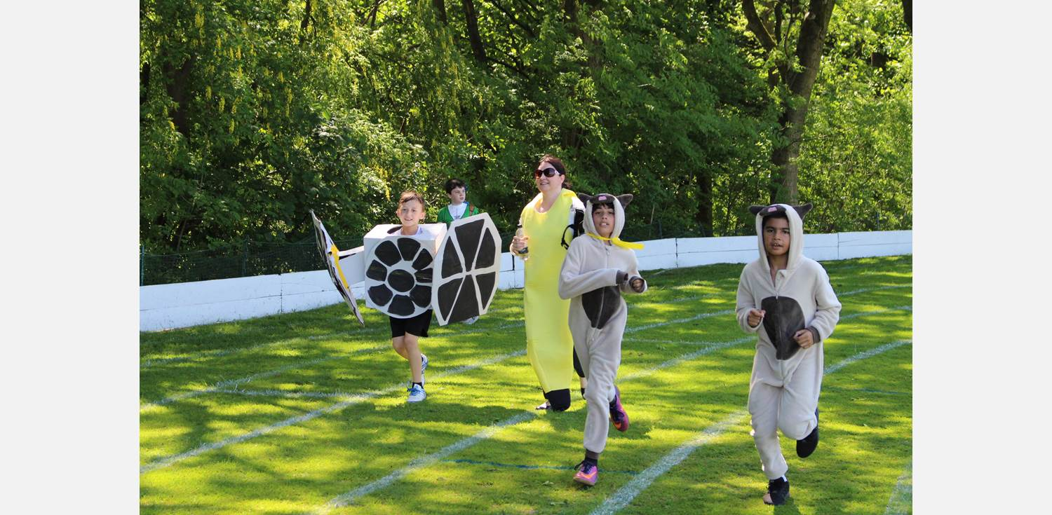 Fun Run - Tie Fighter and animals