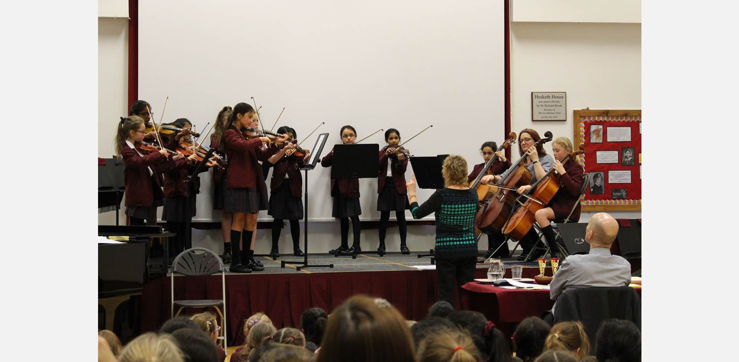 Music Festival String Orchestra