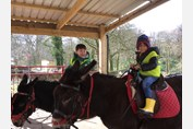 Nursery Class Smithills Open Farm donkey riding