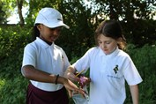 Outdoor Learning Y3 scavenger hunt