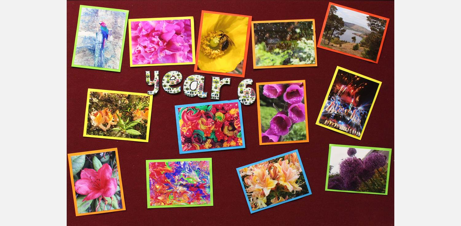 Photography Competition Y6 entries