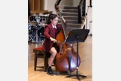 Music Festival double bass