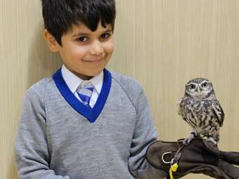 Lancashire Hawks and Owls boy with little owl